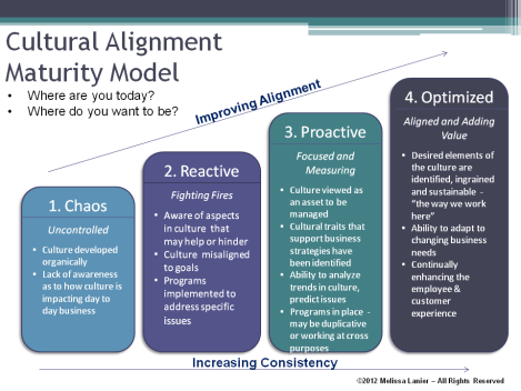 Cultural Alignment Maturity Model